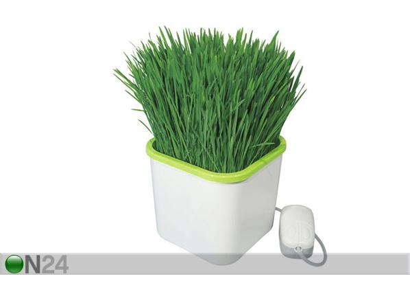 Горшок для выращивания зелени PR-99846